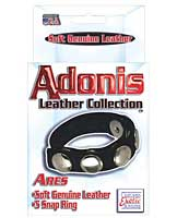 Adonis Leather Collection Ares 5 Snap Adjustable Strap